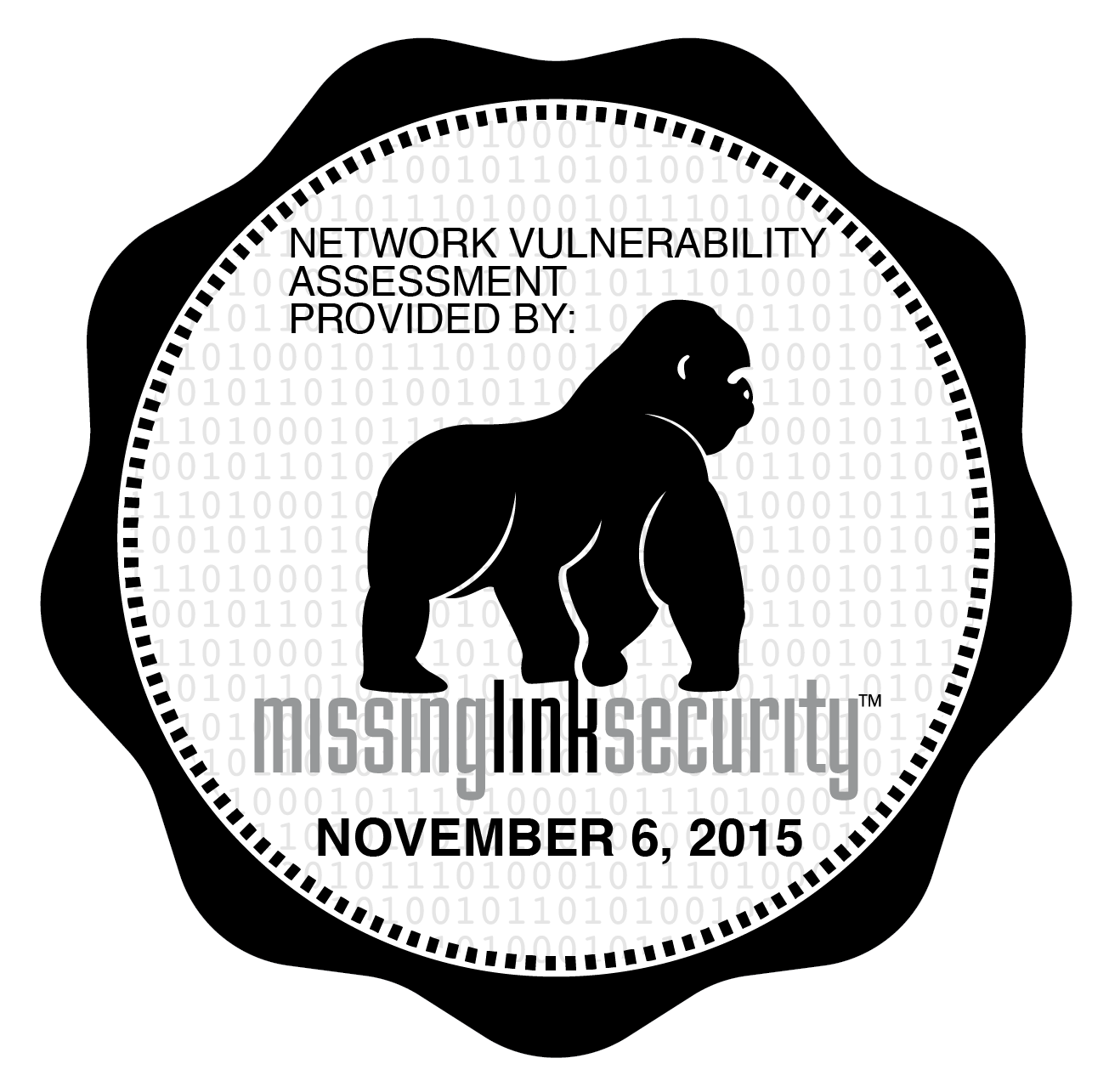 Routine Cyber-security and anti-hacking checks by Missing Link Security